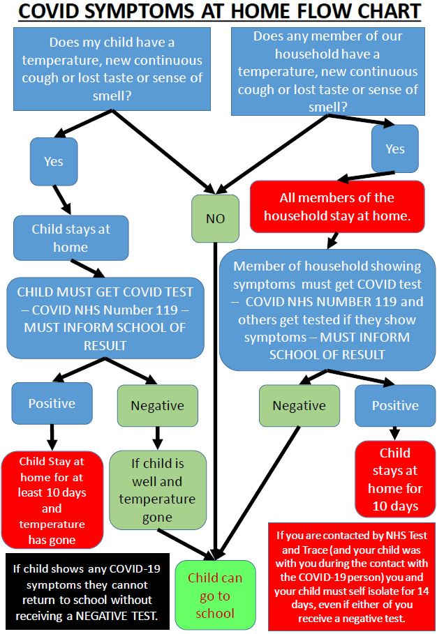 Covid Symptoms at home flow chart for primary and secondary parents